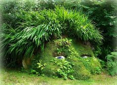 The Lost Gardens of Heligan in Cornwall - I want a garden so lush with whimsy and wonder.