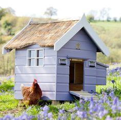 Chicken House | Chalet Starter Chicken Coop | HennyPenny | Farrow  Ball