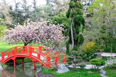 A day at the Japanese garden in Toulouse, France. Check out my travel blog!
