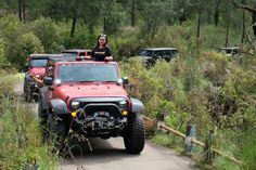 Pajero Sport, Touring, Harley Davidson, Antique Cars, Jeep, Monster Trucks, Antiques, Vehicles, Vintage Cars