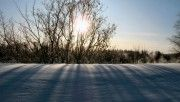 hd winter morning wallpaper download