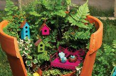 Kendin Yap : Kırılmış Saksılardan Muhteşem Bahçeler