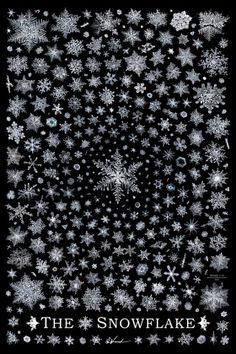 The Snowflake, ultra high resolution poster by Don Komarechka