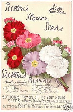 Suttons Seeds Advertising Leaflet. March 1891