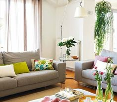 Ivory/bone wall color; grey couch; citrus accents