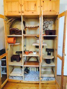 Chinchilla Cage - DIY Cage! Wolier dla szynszyli - własnoręcznie robiona woliera z szafy #szynszyle #szynszyla #chinchilla #chinchillas #szynszyle