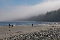 Whalebone Beach, Gabriola Island by GabriolaBill, via Flickr