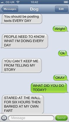 What If Dogs Could Text? 25 Hilarious Texts From Dogs | Bored Panda
