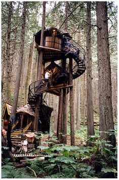 the enchanted forest - british columbia, canada // would make an AWESOME tree house. British Columbia, Cool Tree Houses, Fantasy Forest, In The Tree, Oh The Places You'll Go, The Great Outdoors, Architecture Design, Beautiful Places, Around The Worlds
