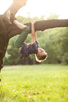 Boy playing on a tree