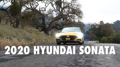 2020 Hyundai Sonata - The Redesigned and Sexy Sedan with Turbo Hyundai Sonata, Group Work, Tail Light, Driving Test, City, Instagram, Cities, Teamwork