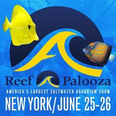 ReefAPalooza New York is just around the corner we look forward to seeing you there. #Brightwellaquatics #reefapaloozany