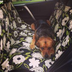 Handmade Dog Car Seat Cover | healthyhappyhearts