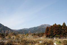 菰野千草地区  釈迦ヶ岳を望む  平成24年3月撮影
