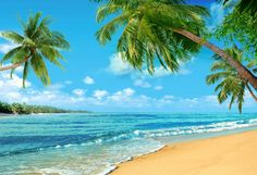 Seaside Beautiful View Backdrops for Relax Vocation Photography Backgr – starbackdrop