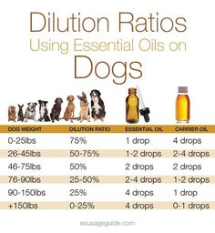 Dilution chart for dogs