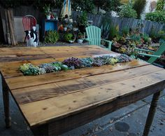 upcycled timber pallet - wanna try this with my old floorboards....