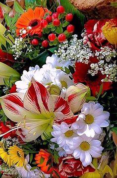 Flower arrangements tips Beautiful Rose Flowers, Beautiful Flowers Wallpapers, Exotic Flowers, Amazing Flowers, Pretty Flowers, Colorful Flowers, Beautiful Gardens, Beautiful Flowers Pictures, Fresh Flowers