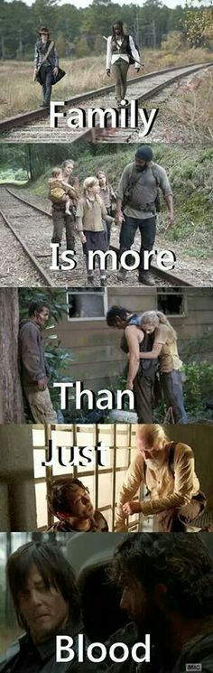"The Walking Dead -""Family is more than Blood"" A Walking Deceased and also Affect on Walking Dead Funny, Walking Dead Zombies, Walking Dead Quotes, Walking Dead Tv Series, Fear The Walking Dead, Lizzie The Walking Dead, Movies And Series, Fandoms, Daryl Dixon"