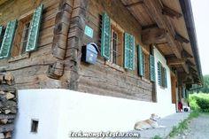 Außergewöhnliche Masia aus Terasse aus Holz - New Ideas Rustic Houses Exterior, Modern Exterior, Exterior Design, Interior And Exterior, Rustic Home Design, Modern House Design, Home Smoker, Rustic Staircase, Alpine House