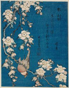 Katsushika Hokusai Bullfinch and weeping cherry