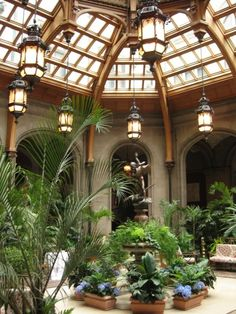 The Winter Garden conservatory at the Biltmore Estate    (via Hill Country Mysteries: The Biltmore Estate)