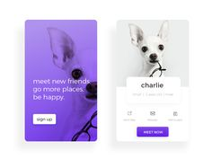 Design Hunt is a daily collection of the best products, news, and inspiration for all creatives. Ui Design Mobile, Food Graphic Design, App Ui Design, Pet Branding, Wonder Pets, Website Design Layout, Web Design Projects, Pet News, Web Design Inspiration