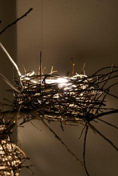 nest light