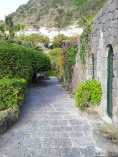 Wow i giardini Poseidon a Ischia