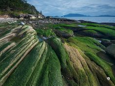 Pathos island, Washington