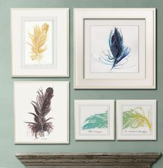 Grouping of Feathers: reminds me to have courage and believe in myself (like the magic feather did for Dumbo)