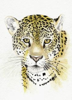 Leopard 5x7 PRINT from original watercolor painting leopard