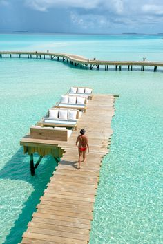 24 best maldives images maldives resort sea turtles destinations rh pinterest com