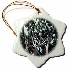 Henrik Lehnerer Designs  Nature  Old Fig Tree in Santa Barbara near the train station  3 inch Snowflake Porcelain Ornament orn_244369_1 >>> Want to know more, click on the image.
