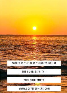 Taste of Paradise at Kauai Coffee Company - CoffeeSphere