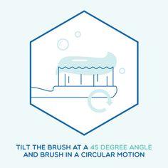 BRUSHING BASICS: Angle matters! Tilt the brush to clean and massage the gumline better.
