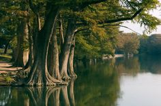 Guadalupe River,Kerrville, Texas