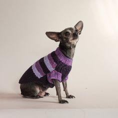 It Reigns AgainPurple Reign Basketweave Dog by HepzibabaBowWow, $35.00