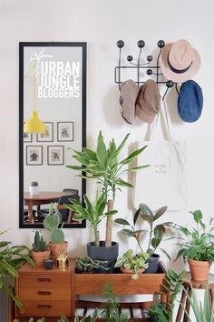 Urban Jungle Bloggers: My Plant Gang by @fmasika