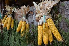 Decorazioni fatte con il mais a Rango, Trentino