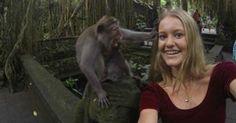 Lista reúne selfie ao lado de vaca, macaco e até tubarão