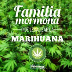 Familia Mormona pide legalizar la Marihuana http://losmormones.org/2116/familia-mormona-pide-legalizar-la-marihuana #Mormon #mormona #marihuana #mormones