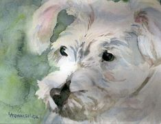 5 Blank Note Cards  Westie Bichon Frise Mix  by SycamoreWoodStudio