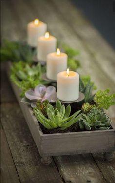 #centrodemesa #velas #boda #sustentable #plantas #bariolés #trends