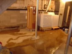 Damp Basement? Quick Guide To Diagnosing and Controlling Moisture Issues