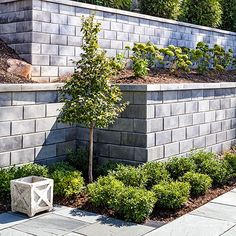 retaining wall blocks G Force Smooth muret 05 213 - Modern Design Cheap Retaining Wall, Concrete Block Retaining Wall, Backyard Retaining Walls, Backyard Fences, Cinder Block Walls, Front Yard Fence, Front Yards, Side Yards, Sloped Garden