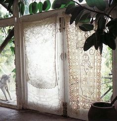 Nice Laces For Windows For Living Room