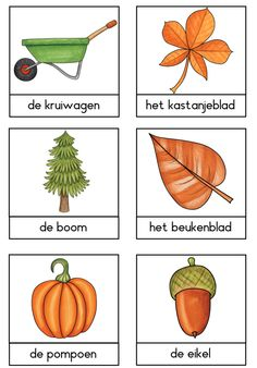 Dutch Language, Autumn Activities For Kids, Learning Numbers, Fall Table, Exercise For Kids, Home Schooling, Baby Play, Halloween Art, Primary School