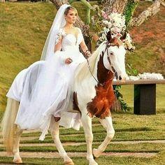 Instagram media by asbrutasoficial - Sonho de toda bruta de verdade. 👏🏻👏🏻🐎🔝➰😍❤️ _____________________________________________ ⠀⠀⠀➰⭐L͟͟o͟͟n͟͟g͟͟L͟͟i͟͟v͟͟e͟͟C͟͟o͟͟w͟͟g͟͟i͟͟r͟͟l͟͟s͟͟⭐➰ _____________________________________________  #country #countrygirl #countrylife #rodeo #horse #boots #cowboy #cowgilr #longlivecowgirls #texas #nature #amazing #perfect #cavalos #veterinary #agronomy #farm #dallas #rodeio #top #sertanejo #asbrutasoficial #bruta #longlivecowboys #nalida #paixao #amo #love…
