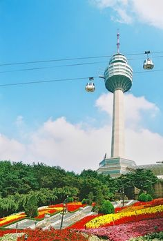 "The tower called ""83 Tower"" is at E-Land(Amusement parkl) in Daegu. It's a symbol of Daegu and has 83 stories."